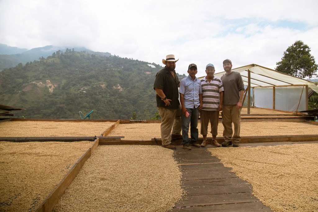 coffee drying moisture