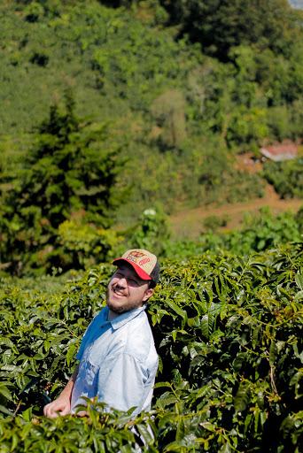 Bonus picture of our roaster Nick becoming one with the coffee shrubs